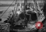 Image of weighing catch of fish Gloucester Massachusetts USA, 1935, second 5 stock footage video 65675046871