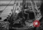 Image of weighing catch of fish Gloucester Massachusetts USA, 1935, second 6 stock footage video 65675046871