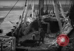 Image of weighing catch of fish Gloucester Massachusetts USA, 1935, second 7 stock footage video 65675046871
