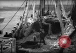 Image of weighing catch of fish Gloucester Massachusetts USA, 1935, second 12 stock footage video 65675046871