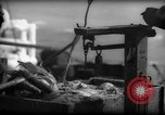 Image of Fishermen have catch weighed Gloucester Massachusetts USA, 1935, second 6 stock footage video 65675046872