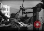 Image of Fishermen have catch weighed Gloucester Massachusetts USA, 1935, second 9 stock footage video 65675046872