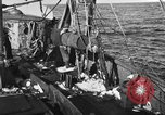 Image of fishing boat at work Atlantic Ocean Massachusetts United States USA, 1935, second 4 stock footage video 65675046885