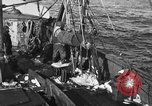 Image of fishing boat at work Atlantic Ocean Massachusetts United States USA, 1935, second 7 stock footage video 65675046885