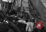 Image of fishing boat at work Atlantic Ocean Massachusetts United States USA, 1935, second 12 stock footage video 65675046885