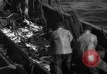 Image of commercial fishing Massachusetts USA, 1935, second 2 stock footage video 65675046887