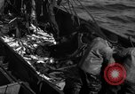 Image of commercial fishing Massachusetts USA, 1935, second 4 stock footage video 65675046887