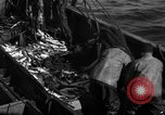 Image of commercial fishing Massachusetts USA, 1935, second 5 stock footage video 65675046887