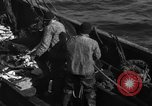 Image of commercial fishing Massachusetts USA, 1935, second 12 stock footage video 65675046887