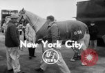 Image of American horse jumping team New York United States USA, 1956, second 2 stock footage video 65675046949