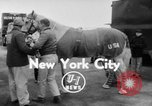Image of American horse jumping team New York United States USA, 1956, second 3 stock footage video 65675046949