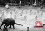 Image of Spring circus New York City USA, 1956, second 6 stock footage video 65675046952
