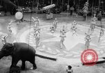 Image of Spring circus New York City USA, 1956, second 7 stock footage video 65675046952