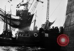 Image of German torpedo boats Atlantic Ocean, 1944, second 5 stock footage video 65675047127