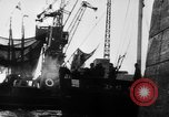 Image of German torpedo boats Atlantic Ocean, 1944, second 6 stock footage video 65675047127