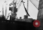 Image of German torpedo boats Atlantic Ocean, 1944, second 9 stock footage video 65675047127