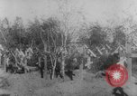 Image of graves of Allied soldiers Russia, 1918, second 3 stock footage video 65675047168