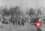 Image of graves of Allied soldiers Russia, 1918, second 4 stock footage video 65675047168