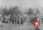 Image of graves of Allied soldiers Russia, 1918, second 5 stock footage video 65675047168