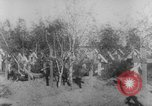 Image of graves of Allied soldiers Russia, 1918, second 10 stock footage video 65675047168