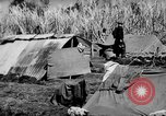Image of 804th Aviation Engineers rebuilding Aslito Airfield Saipan Mariana Islands, 1944, second 8 stock footage video 65675047537