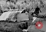 Image of 804th Aviation Engineers rebuilding Aslito Airfield Saipan Mariana Islands, 1944, second 9 stock footage video 65675047537
