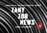 Image of baby elephants perform tricks at St Louis zoo Saint Louis Missouri USA, 1956, second 2 stock footage video 65675047750