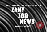 Image of baby elephants perform tricks at St Louis zoo Saint Louis Missouri USA, 1956, second 3 stock footage video 65675047750