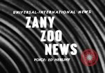 Image of baby elephants perform tricks at St Louis zoo Saint Louis Missouri USA, 1956, second 4 stock footage video 65675047750