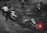 Image of pit of fire New York United States USA, 1938, second 7 stock footage video 65675047789