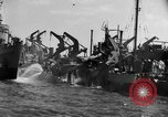 Image of United States troops Normandy France, 1944, second 9 stock footage video 65675047871