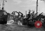 Image of United States troops Normandy France, 1944, second 12 stock footage video 65675047871