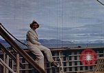 Image of Eva Braun Europe, 1940, second 9 stock footage video 65675048092