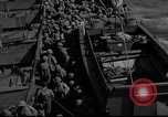 Image of United States Marines Pacific Theater, 1943, second 12 stock footage video 65675048159