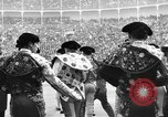 Image of bull fighting Spain, 1956, second 10 stock footage video 65675048297