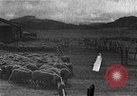 Image of Korean livestock industry North Korea, 1947, second 9 stock footage video 65675048309