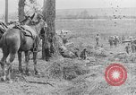 Image of British fight in Battle of Somme France, 1916, second 11 stock footage video 65675048359