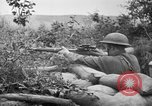 Image of 1903 Springfield rifle with sniper scope United States USA, 1918, second 3 stock footage video 65675048405