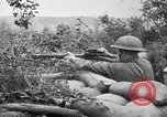 Image of 1903 Springfield rifle with sniper scope United States USA, 1918, second 4 stock footage video 65675048405