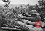 Image of 1903 Springfield rifle with sniper scope United States USA, 1918, second 5 stock footage video 65675048405