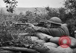 Image of 1903 Springfield rifle with sniper scope United States USA, 1918, second 7 stock footage video 65675048405
