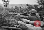 Image of 1903 Springfield rifle with sniper scope United States USA, 1918, second 9 stock footage video 65675048405