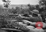 Image of 1903 Springfield rifle with sniper scope United States USA, 1918, second 10 stock footage video 65675048405