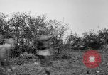 Image of AEF training with small mountain gun France, 1918, second 2 stock footage video 65675048416
