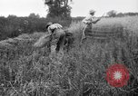 Image of scythe United States USA, 1917, second 8 stock footage video 65675048440