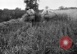 Image of scythe United States USA, 1917, second 10 stock footage video 65675048440