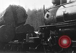 Image of wood logs United States USA, 1917, second 3 stock footage video 65675048520
