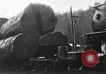 Image of wood logs United States USA, 1917, second 5 stock footage video 65675048520