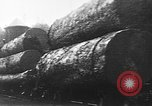 Image of wood logs United States USA, 1917, second 10 stock footage video 65675048520