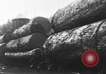 Image of wood logs United States USA, 1917, second 11 stock footage video 65675048520